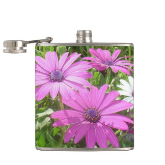 Purple And Pink Tropical Daisy Flower Hip Flask