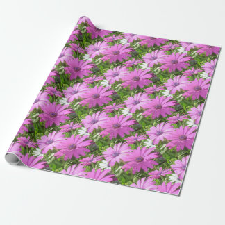 Purple And Pink Tropical Daisy Flower Wrapping Paper