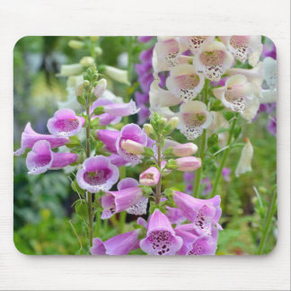 Purple and white foxglove flowers mouse pad