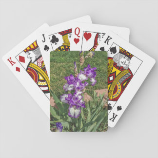 Purple and White Iris - Mother's Day, Get Well Poker Deck