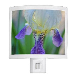Purple and White Iris Nite Lite