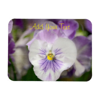Purple and White Violas by Shirley Taylor Rectangular Photo Magnet