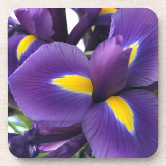 Purple and Yellow Irises Coaster