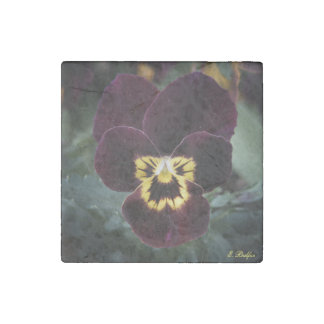 Purple and Yellow Miniature Pansy Stone Magnets