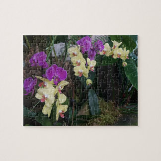 Purple and Yellow Orchids Jigsaw Puzzle