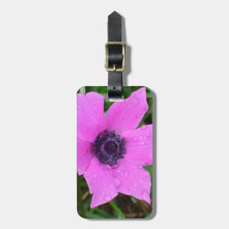 Purple Anemone - Anemone Coronaria Flower Luggage Tag