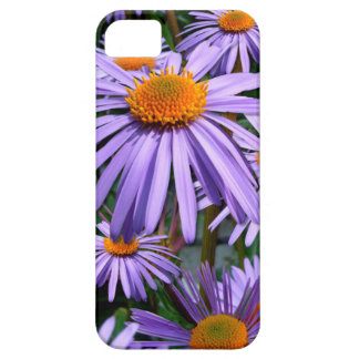 Purple Asters iPhone 5 case