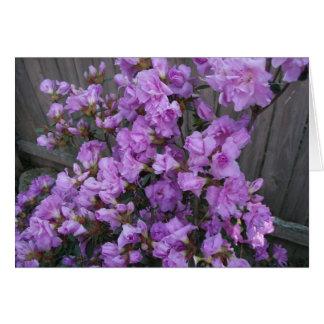 Purple Azaleas Merchandise Card
