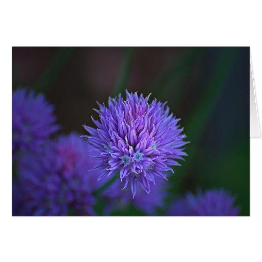 purple balls card