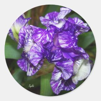 Purple Batik Iris Sticker Round Stickers