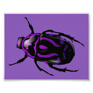 Purple Beetle Poster