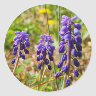 Purple Bell Buds Flower Sticker