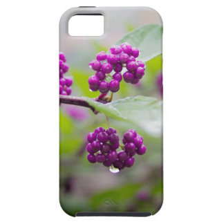 Purple Berries Case For The iPhone 5