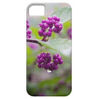 Purple Berries iPhone 5 Cover
