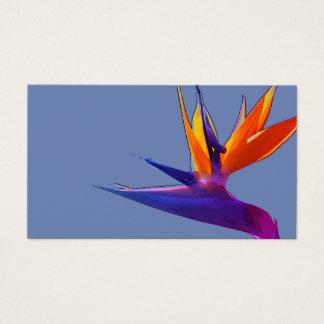 Purple Bird of Paradise Business Card