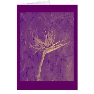 Purple Bird of Paradise Card