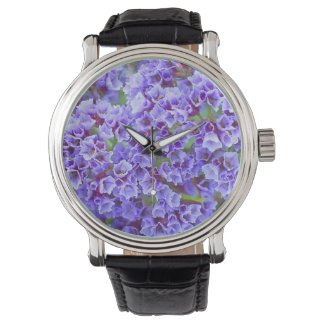 Purple Blooms in Spring Watch