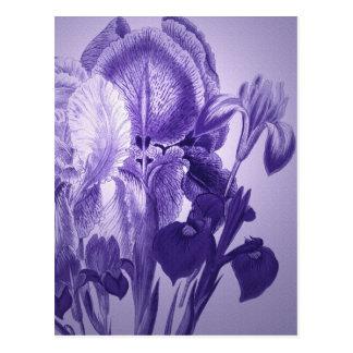 Purple Botanical Postcard