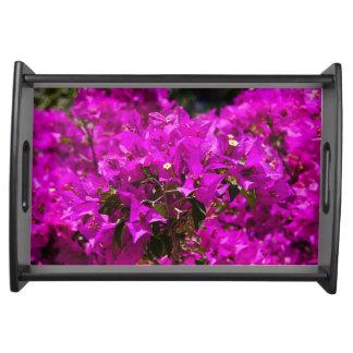 Purple Bougainvillea flowers Serving Tray