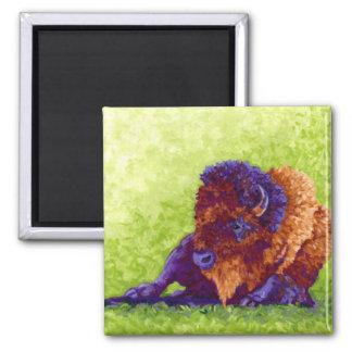 Purple Buffalo Square Magnet