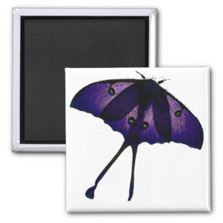 Purple Butterfly Drawing Photograph Sketch Magnet