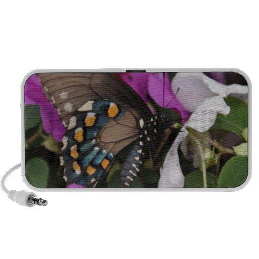 Purple Butterfly Photo Notebook Speakers
