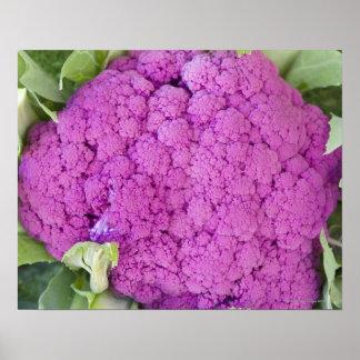 Purple cauliflower for sale poster