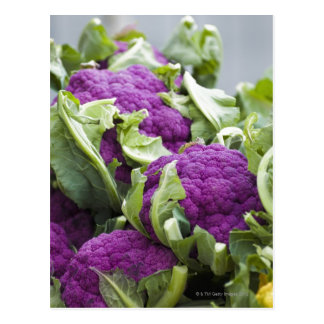 Purple cauliflower postcard