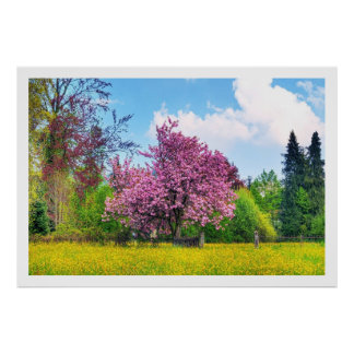 Purple Cherry Tree On Yellow Flower Field Poster