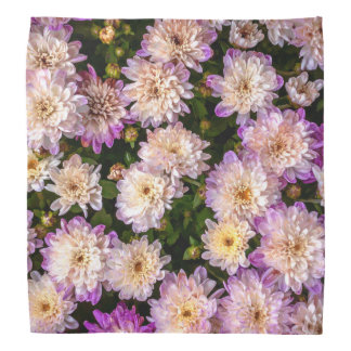 Purple Chrysanthemum Bandana