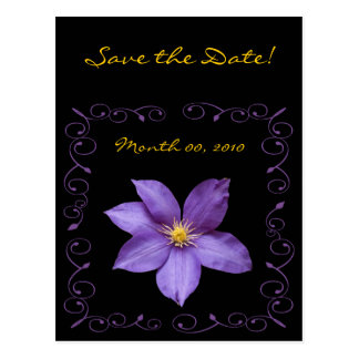 Purple Clematis Postcard