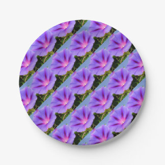 Purple Colored Morning Glory Flower Paper Plate