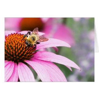 Purple Cone Flower with Bee Card