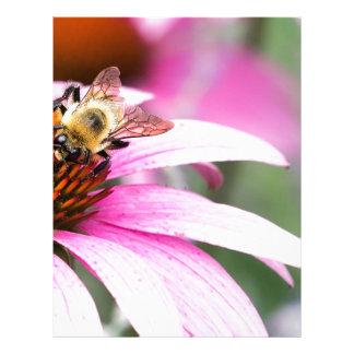 Purple Cone Flower with Bee Letterhead