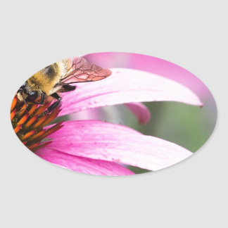 Purple Cone Flower with Bee Oval Sticker