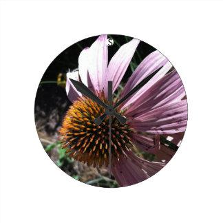 Purple Coneflower Clocks