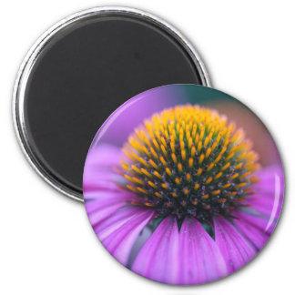 Purple coneflower (Echinacea purpurea) 2 Inch Round Magnet