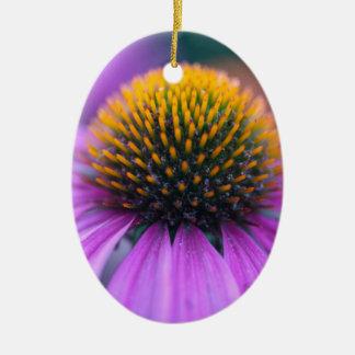 Purple coneflower (Echinacea purpurea) Ceramic Oval Ornament