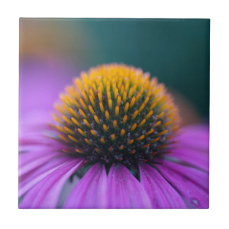 Purple coneflower (Echinacea purpurea) Ceramic Tile