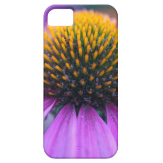 Purple coneflower (Echinacea purpurea) iPhone 5 Cover