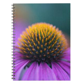 Purple coneflower (Echinacea purpurea) Notebooks