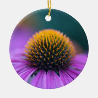 Purple coneflower (Echinacea purpurea) Round Ceramic Ornament