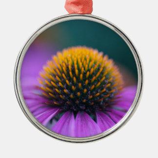 Purple coneflower (Echinacea purpurea) Silver-Colored Round Ornament