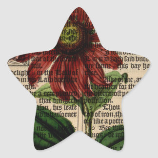 Purple Coneflower Flower Star Sticker