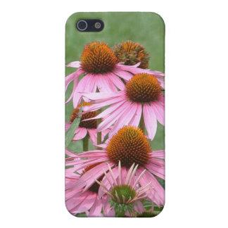 Purple Coneflower Garden iPhone 5 Cover