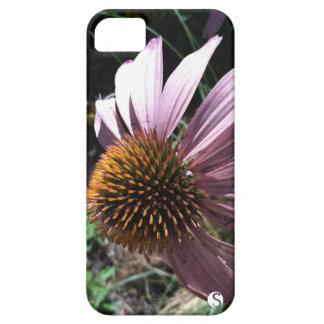 Purple Coneflower iPhone 5 Covers