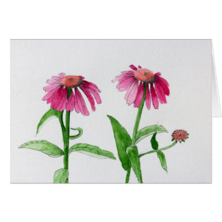 Purple Coneflowers Card
