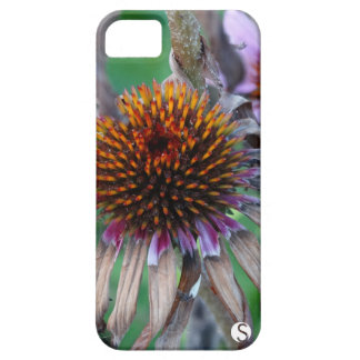 Purple Coneflowers iPhone 5 Covers