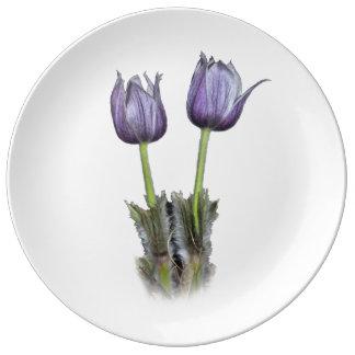 Purple Crocus Flowers Porcelain Plates