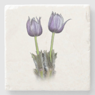 Purple Crocus Flowers Stone Coaster